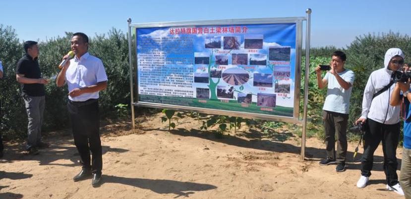 吉隆沙漠生态治理绿色传奇